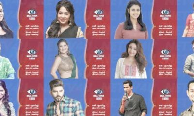 bigg-boss-3-contestant