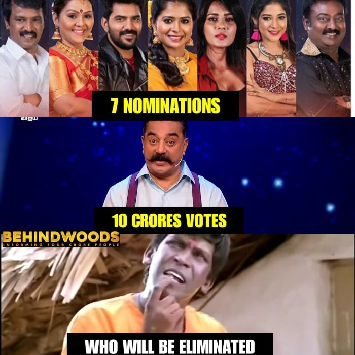 bigg-boss-3-elimination